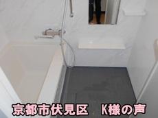 DSCN2541.JPGのサムネール画像