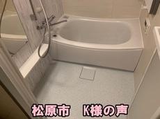 木虎002.jpg